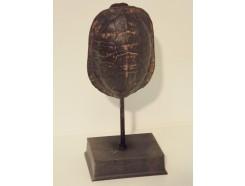 P1035516 Poly. Schild van schildpad op voet medium. Hoogte : 22 cm.