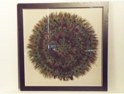 T25283 Wanddecoratie. Pauwenveren op canvas achter glas in zwarte lijst 90 x 90 cm.