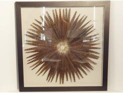 T30192 Wanddecoratie. Fazantveren rond op canvas achter glas in zwarte lijst 90 x 90 cm.